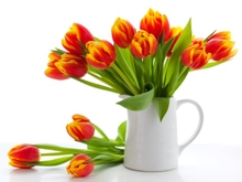 Flowers in a vase against white background